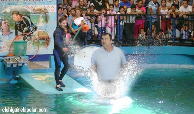 Makled ser recluido en acuario de valencia el chig ire for Acuario valencia precio