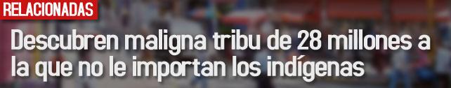 link_descubren_maligna_tribu