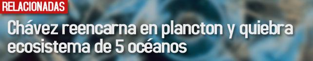 link_chavez_reencarnacion