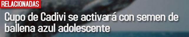 link_cupo_de_cadivi_se_activara