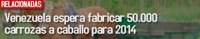 link_venezuela_espera_carrozas
