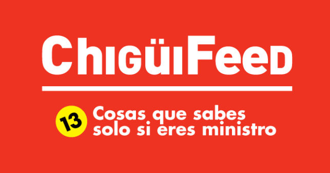 chiguifeed