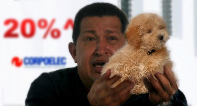 """Chávez: """"Aumentará la electricidad, pero miren este perrito súper cuchi"""""""