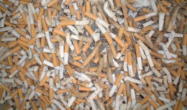 Miembros del PSUV se fuman 5 cajas de cigarros diarias en solidaridad con Chávez