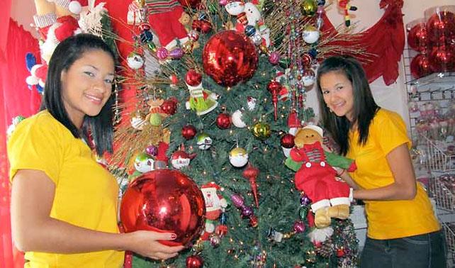 Familia gasta BsF. 3mil en árbol triangular que se pudre en un mes
