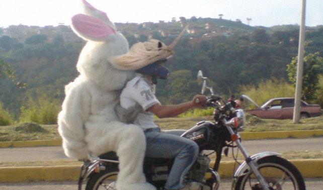 Disfrazan a motorizados de unicornios durante cumbre del CELAC