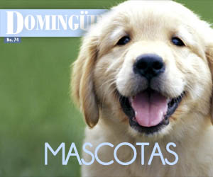 Domingüire Nro.74: Mascotas