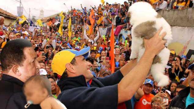 Para subir en encuestas, Capriles se fotografía con cachorro, con bebé y con Chávez