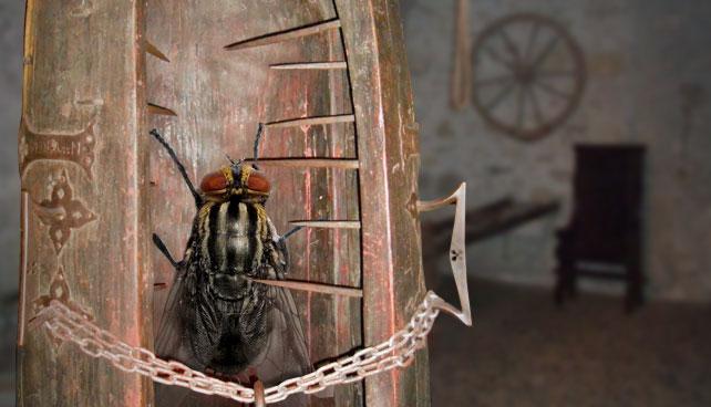 Diosdado Cabello tortura durante 24 horas a mosca que se montó en su plato