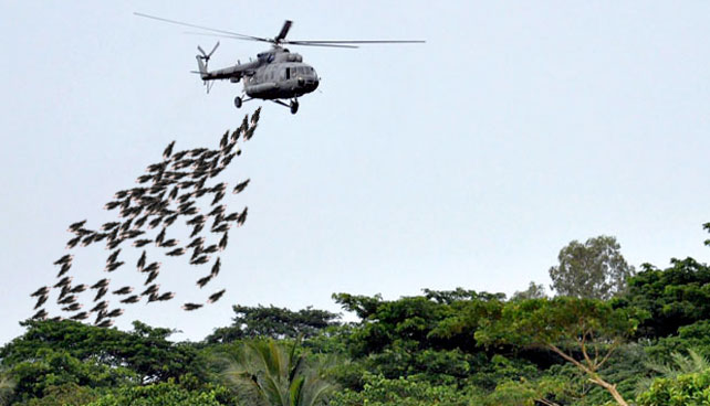 ONU envía 3.000 toneladas de Presidentes eficientes para solucionar problemas de Venezuela