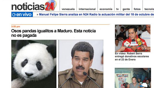 """Noticias24: """"Osos pandas igualitos a Maduro. Esta noticia no es pagada"""""""