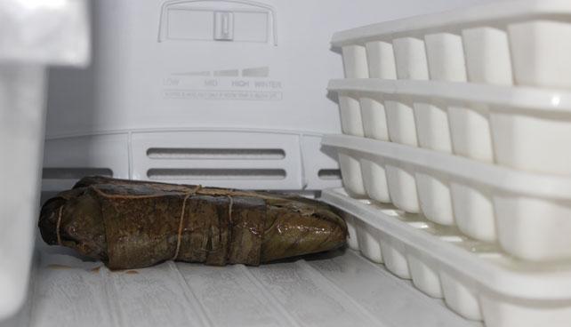 Hallaca en congelador sospecha que será abierta en abril