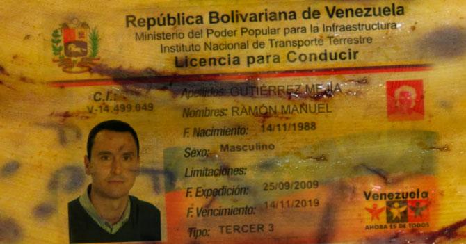 Por falta de plástico imprimirán licencias en conchas de plátano