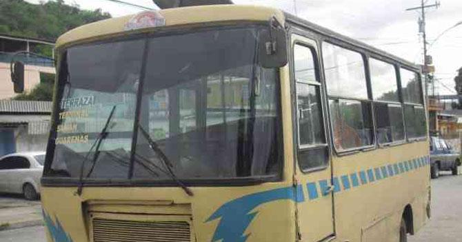 Joven muere esperando autobús e ingresa meses después reencarnada en ardilla