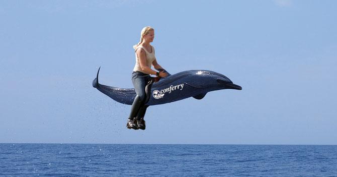 Conferry anuncia pasaje a precio solidario en lomo de delfín