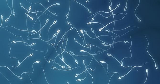 Espermatozoides protestan por escasez de anticonceptivos y temor de nacer en Venezuela