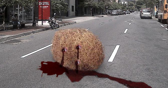 Roban y matan a bola de paja que rodaba en la noche por la ciudad