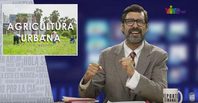 Reporte Semanal - Agricultura Urbana