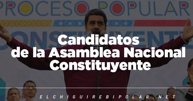 Candidatos de la Constituyente