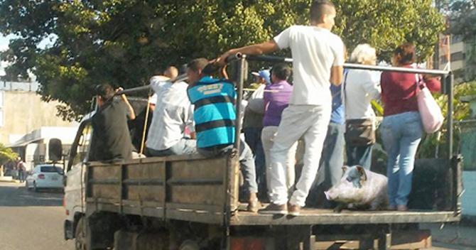 Cochino se confunde de camión y termina varado en Valencia