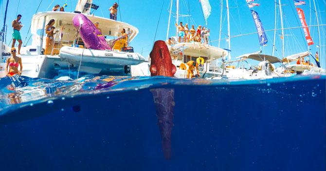 Diosdado exige que La Patilla le compre 4 catamaranes para su mazo