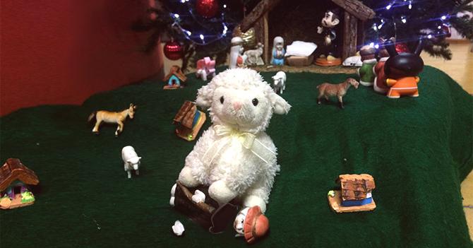 Pastor de pesebre muere aplastado por oveja de otra colección