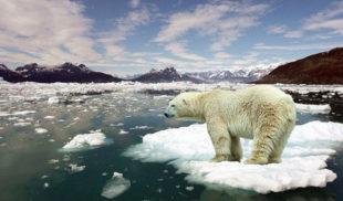 9 pruebas que demuestran que el cambio climático sí existe
