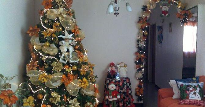 Señora no saca arbolito de Navidad porque ya está montado en la sala desde 1996