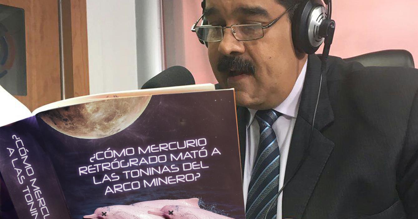 Gobierno acusa a mercurio retrógrado de contaminar toninas del Arco Minero