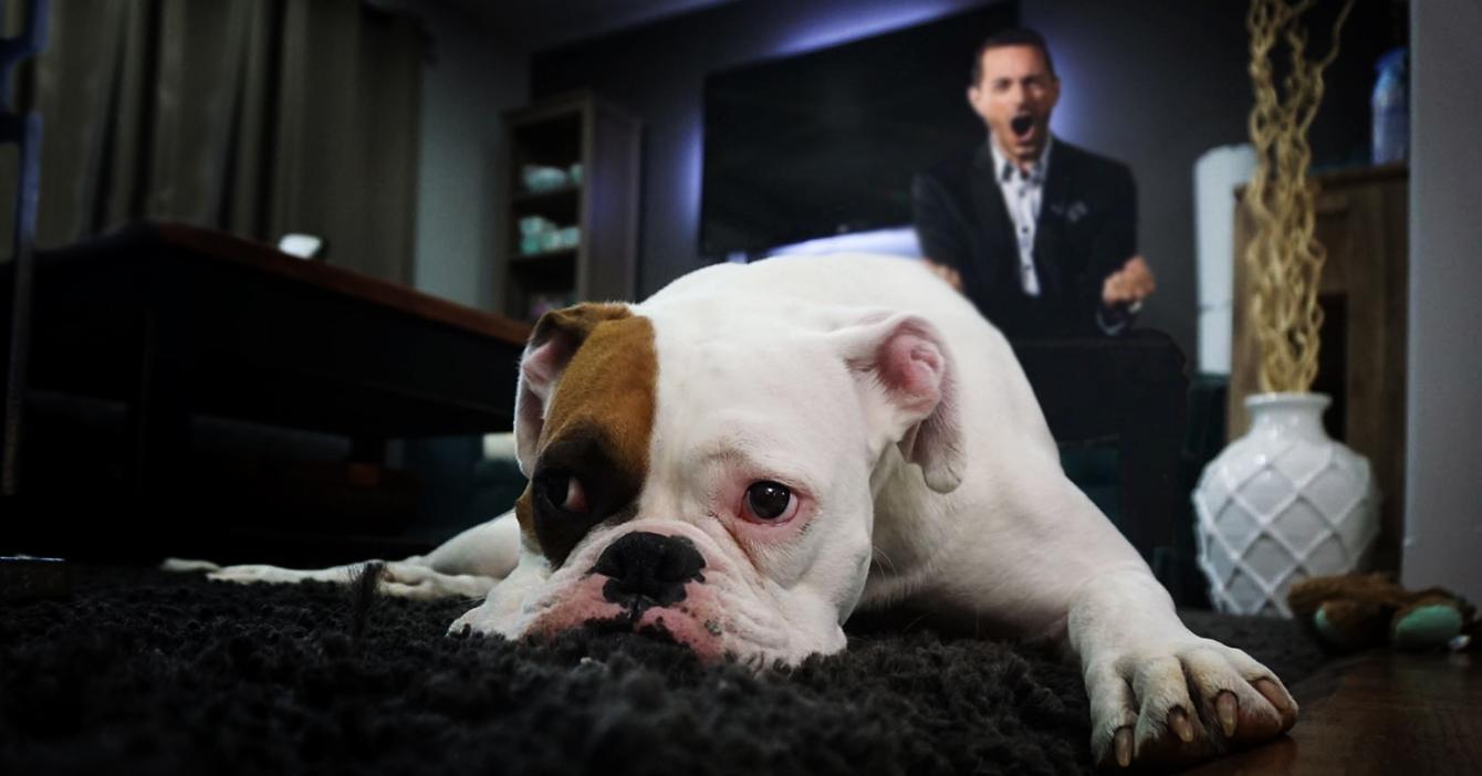 Pablo Giralt trabaja desde casa y le grita a su perro por 24 horas