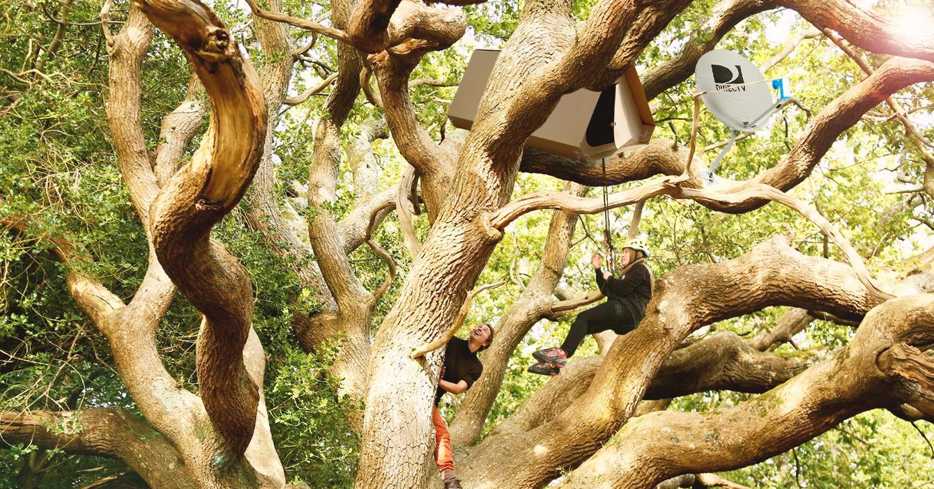 Para no pagar alquiler jóvenes venezolanos hacen nidos en árboles de Caracas