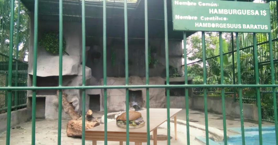 Zoológico de Caricuao habilita jaula para hamburguesa de 1$