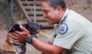 """Perro policía aprende a decir """"¿y cómo hacemos?"""""""