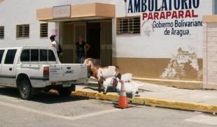 OMS reconoce esfuerzo de ambulatorio venezolano por cumplir todas las medidas sanitarias para criar chivos